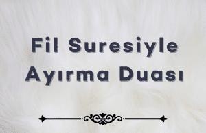 Fil Suresiyle Ayirma Duasi 300x194 - Anasayfa